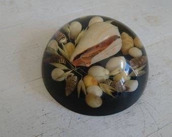 Vintage Resin and Shell Round Paperweight - Large - 11cm