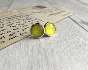 Lime earrings, gin and tonic lover, fruit earrings, g&t, stud earrings, fruit post earrings, fruit jewellery, gin lover, summer drinks UK