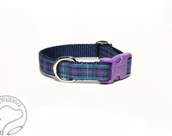 """Ancient Pride of Scotland Tartan Dog Collar 3/4"""" (19mm) Wide / Choice of style and size / Martingale or Side Release / Authentic Scottish"""