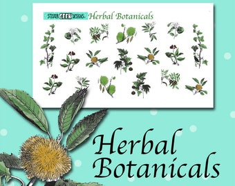 Planner Stickers | Herb Stickers | Herbal Stickers | Botanical Stickers | Plant Stickers | Flower Stickers