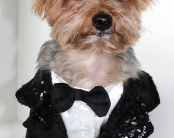 Dog Tuxedo, Small (S) One Piece Black and White Tux for Dogs, Fashion Dog Clothes