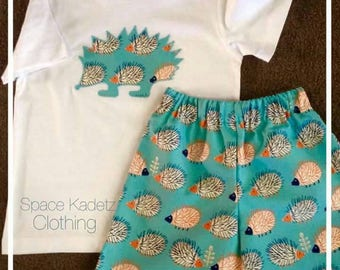 Boys funky Hedgehog shorts and T-shirt set