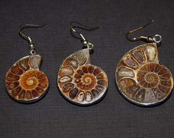 Ammonite Earrings -  Ammonite Jewelry - Fossil Earrings - Nautical Jewelry - Ocean Jewelry - Dinosaur Age Fossils -