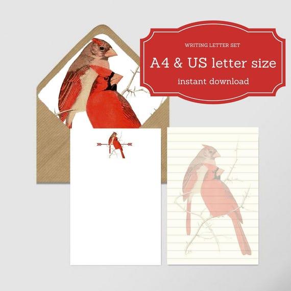 Estremamente Set carta da lettera 2 fogli formato A4 e US letter TO47