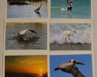 6 Fine Art Florida Scenes Photo Greeting Cards, Handmade Photo Notecards, Florida Photo Card Set