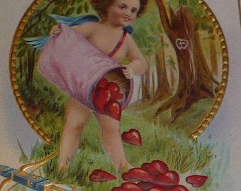 Dan Cupid Has Captured My Heart NASH Antique Valentine Postcard