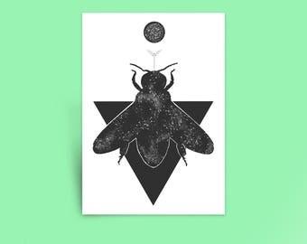 AstroBee Print