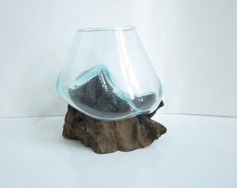 "Molten Glass on Driftwood Base-7""x 6""-Air Plant Terrarium-Fish Bowl-Eco Planter-Hand Blown Terrarium Glass-Driftwood Decor-Unique Gifts"