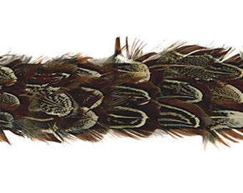 Handmade Wide Pheasant Feather Hatband #2 - Natural Pheasant Feathers