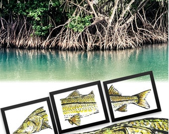 Snook Artwork Trio 12x18