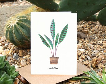 CALATHEA - Greeting Card with Plant Care, Plant Card, Calathea, Plant Lover Card, Botanical Card, House Plant Card