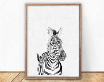 70%OFF black and white baby zebra nursery baby animals safari animals safari baby animals safari nursery wall decor safari decor zebra print