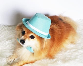 Fedora for DOGS, CATS! HANDMADE dog hats, dog caps, summer hat, cowboy hat, sun visor hat, sun hat, pet accessories, dog hoodies, dog outfit