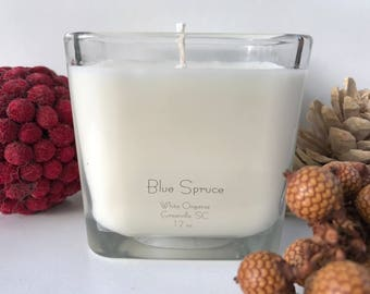 Blue Spruce, Christmas, Holiday, 100% All Natural Soybean Candle, 12 oz., Eco Friendly, Clean Burning, No Color or Dyes, MADE IN USA