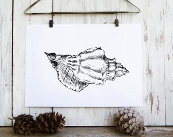 Sea shell home decor - nature printable, Black and white wall art,  Nature print, Art & collectibles, Dorm decor, Spring decor