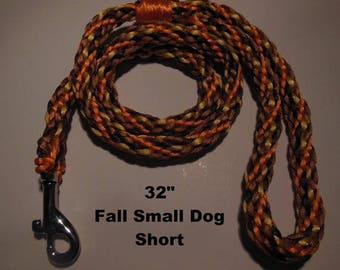 SHORT Small Dog 32 Inch Leash Festive Fall Colors