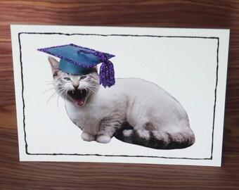 Grumpy cat graduation card