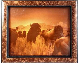 P Chase Original Buffalo Photograph Sepia Tone Signed Framed 1977 Southwest