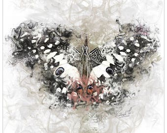 Art-Prints - Spotted Butterfly