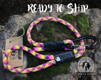 READY to SHIP! 2.5FT Coachella Traffic Lead || Rock Climbing Rope Dog Leash || Handmade in the USA