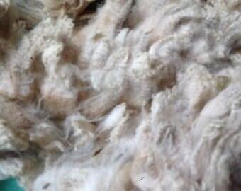 British Corriedale Fleece natural colour