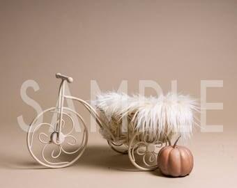 Digital Backdrop/prop newborn - Newborn tryke planter with pumpkins