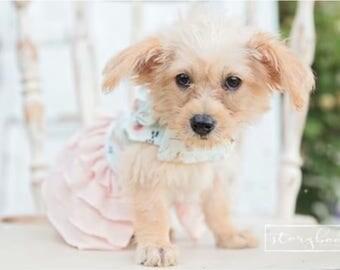 dog clothes, dog dress, puppy dress, dog boho dress, puppy clothes, Willow