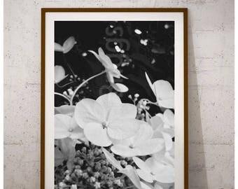 Hydrangea Wall Art hydrangea wall decor | etsy