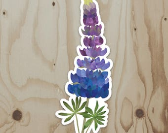 Lupine Vinyl Sticker