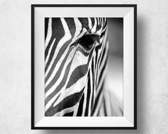 Exceptionnel Zebra Print, Zebra Poster, Animal Art, Animal Prints, Scandinavian Modern,  Zebra