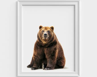 Bear printable, Bear print, Bear decor, Bear wall art, Nursery printable, Baby Bear Cub Print, Nursery Animal Wall Art, Woodlands Decor
