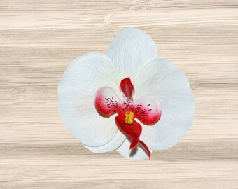 Large White and Red Phalaenopsis Orchid Hair Clip