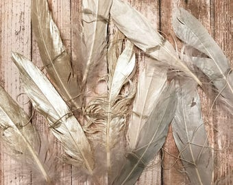 CHAMPAGNE + SILVER PEARL .. Feather Garland, Feather Strand, Wall Hanging, Backdrop, Boho, Gypsy, Feathers