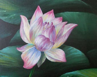 Hawaiian Lotus