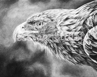PRINT - EAGLE A3