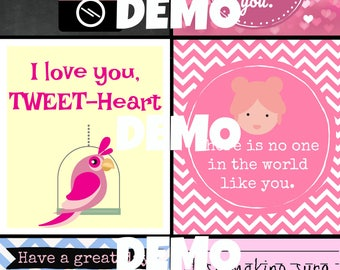 Pink theme heartfelt lunch box notes