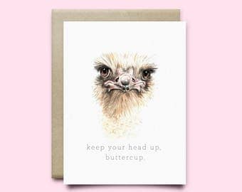 "Ostrich Greeting Card ""Keep your head up, buttercup"" 
