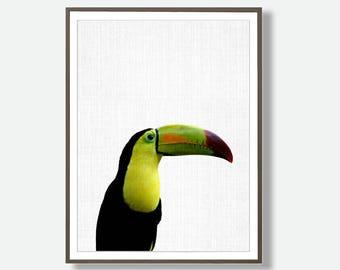 Toucan Print, Tropical Bird Art, Tropical Bird, Large Printable Poster,Toucan Prints, Colorful Bird Art, Toucan Photography, Feliss Art