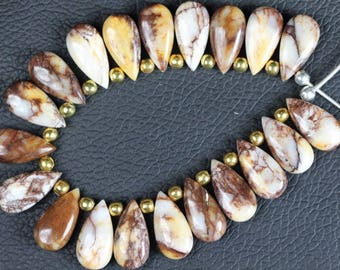 Awesome Agate , 19 piece smooth Brown Agate, Size , 5 x 9 x 18 , mm Approx