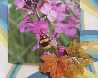 Bee Blank Greetings Card - Busy buzzy bee
