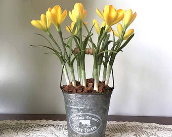 Yellow crocus, spring crocus, crocus arrangement, silk flower arrangement, farm fresh flowers, barn wedding, rustic decor, farmhouse chic