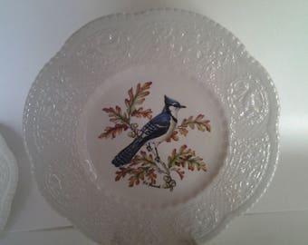 Blue bird plate Royal Cauldon