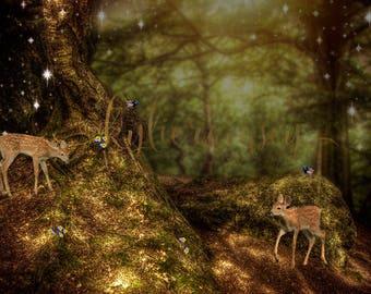Digital Image, Digital Background, Snow white , Fairytale, Portrait Background, Snow White Background, Overlay, Photo Backdrop, Snowwhite