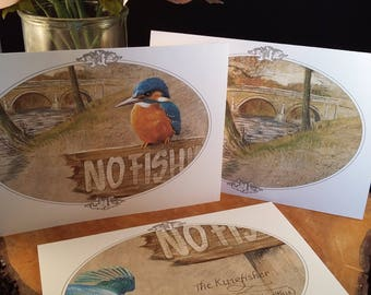 Pack of 6 handmade kingfisher cards
