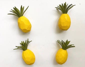 Pineapple Magnet with Felt Air Plant
