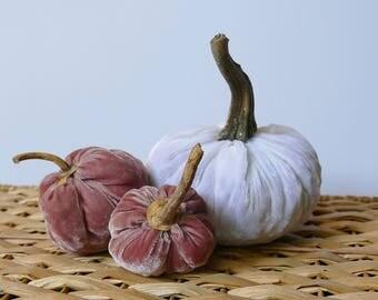 Set of 3 Plush Velvet Pumpkins - Rose and White
