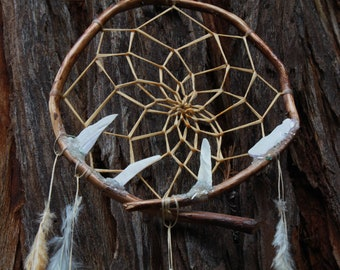 Shell and Crystal dust Dream Catcher