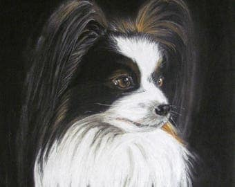 Dog continental toy Spaniel black and white - Spaniel Butterfly - animal portrait in pastel - animal Art
