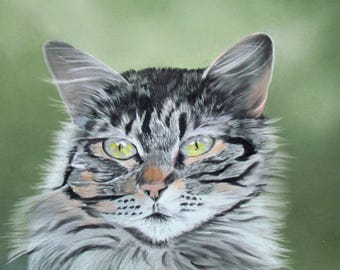 Tabby cat - animal art