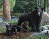 Black Bear & Cubs panel Walking in the Woods by Northcott Wildlife Outdoor Mama Bear